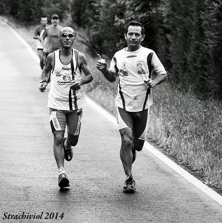Strachiviol 2014