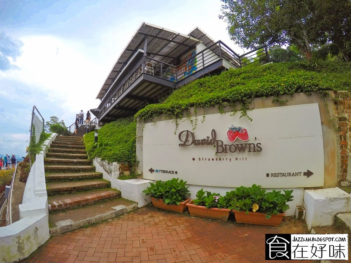 David brown 39 s restaurant and tea terraces penang for 7 terrace penang