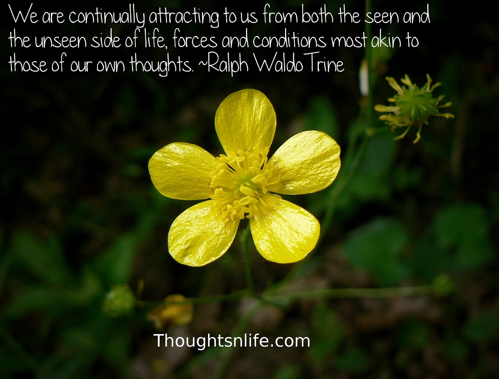 Thoughtsnlife.com: We are continually attracting to us from both the seen and the unseen side of life, forces and conditions most akin to those of our own thoughts. Ralph Waldo Trine