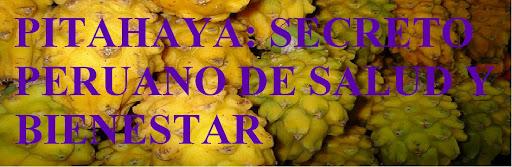PITAHAYA SECRETO PERUANO DE SALUD Y BIENESTAR