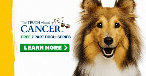The Truth About Pet Cancer...