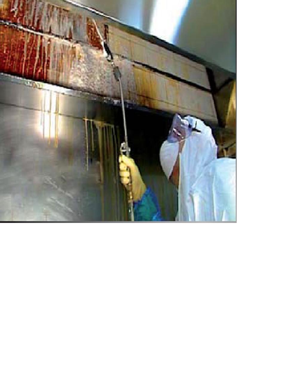 Limpieza de campanas extractoras good limpieza de - Limpiar campana extractora ...