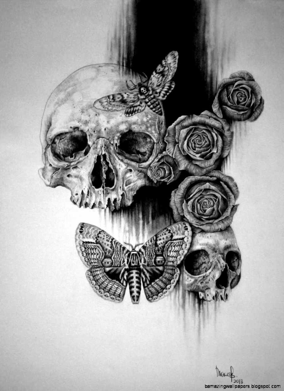 Images Skulls And Roses Drawings Tumblr