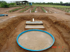 Perda de solo e água na caatinga
