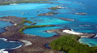 Las Tintoreras Isabela Island, Galapagos