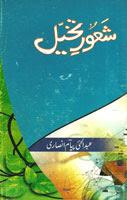 Sahoor-e-Takhaiul  by Abdul Hai Payam Ansari