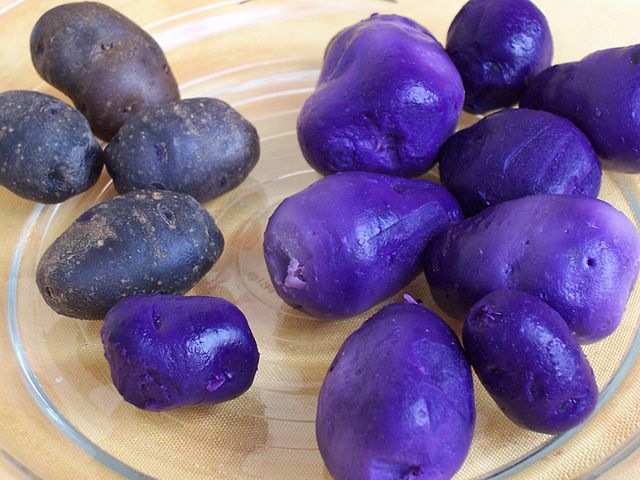 Trivia Facts about Food - Purple Color Potato