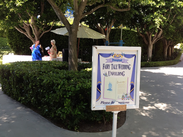 "A True ""Guest"" Post - Rachel and Michael's Disneyland Wedding"