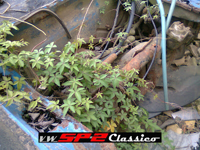 Volkswagen SP2 abandonado_03