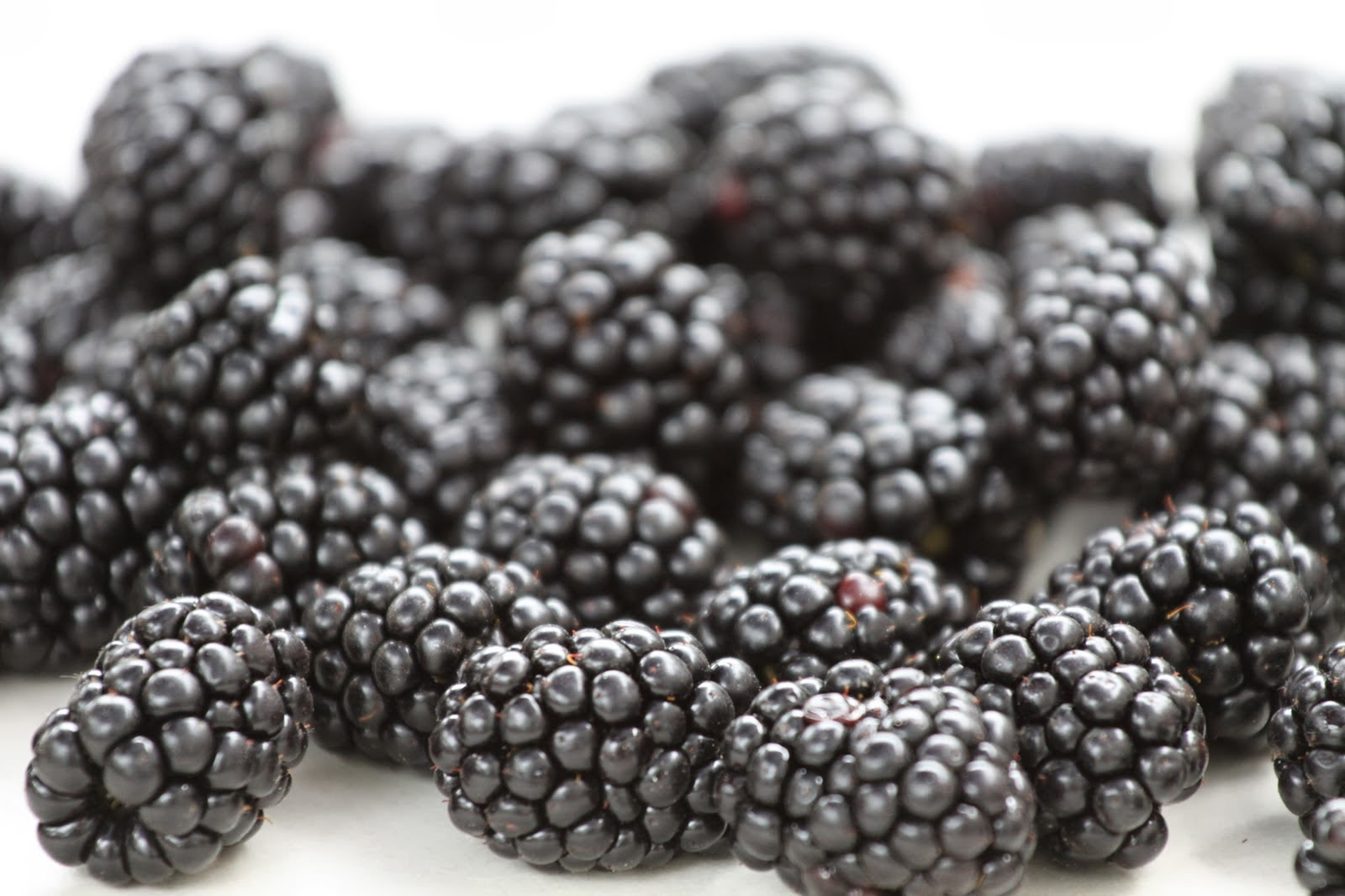 Blackberry fruit wallpaper - Hd And 3d Wallpapers Provide Awesome And Latest Collection Of High Definition Sharp Quality Wallpapers Pictures And Photos