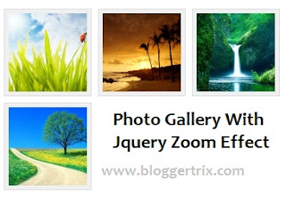 jquery-zoom-effect