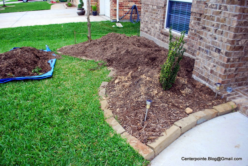 So Ok This Is What Our Front Bed Looked Like Prior To Any Work Beginning Except I Had Sed Off And Tarp D The Top Layer Of Mulch Pulled Out A Few