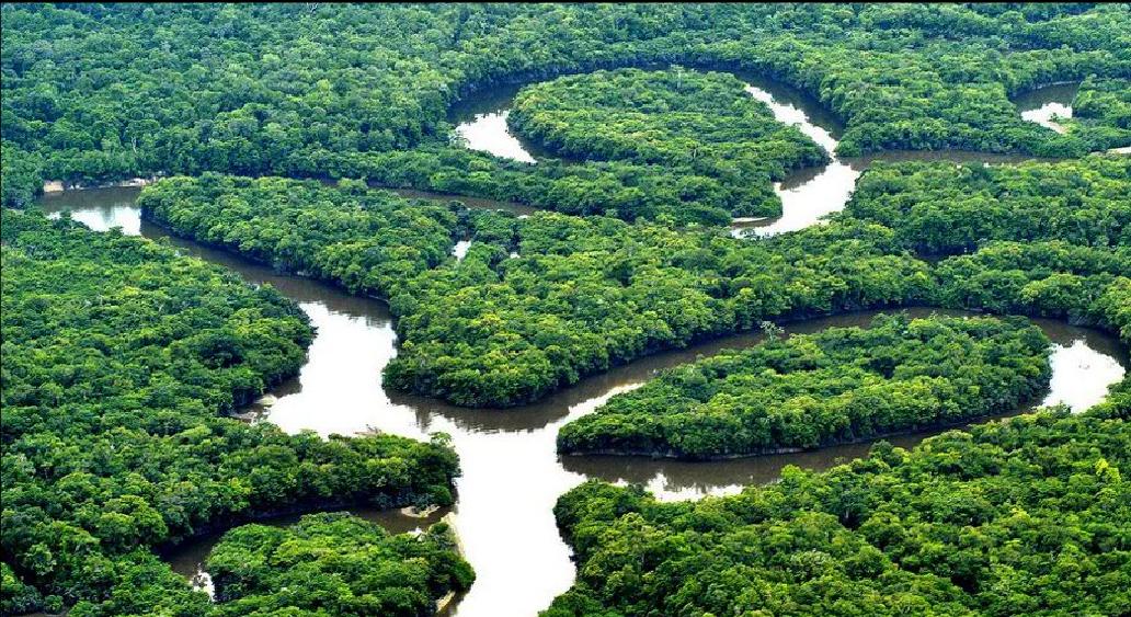ZAKON PRED BRAZILSKIM KONGRESOM: Smanjuje se zaštićeni rezervat u Amazoniji-otvaranje 860.000 hektara za preradu drveta, rudarstvo i poljoprivrednu upotrebu