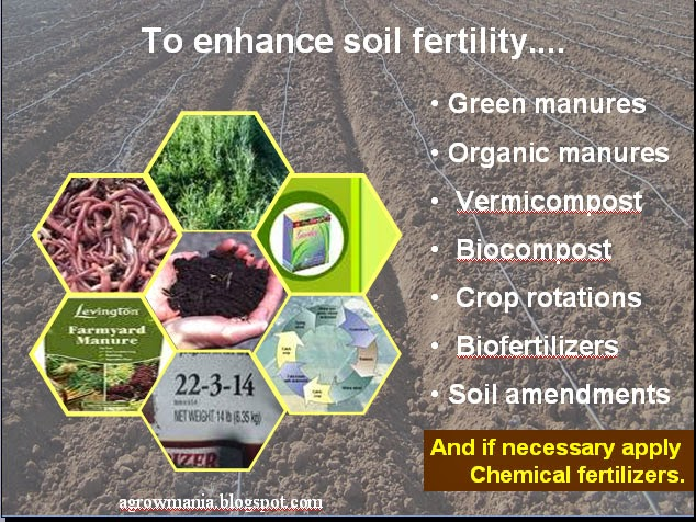 Soil types remedy for problematic soils salt salinity for Types of soil and their uses