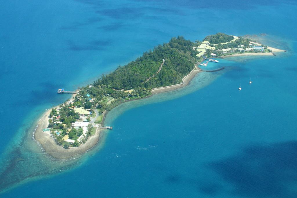 daydream island - photo #23