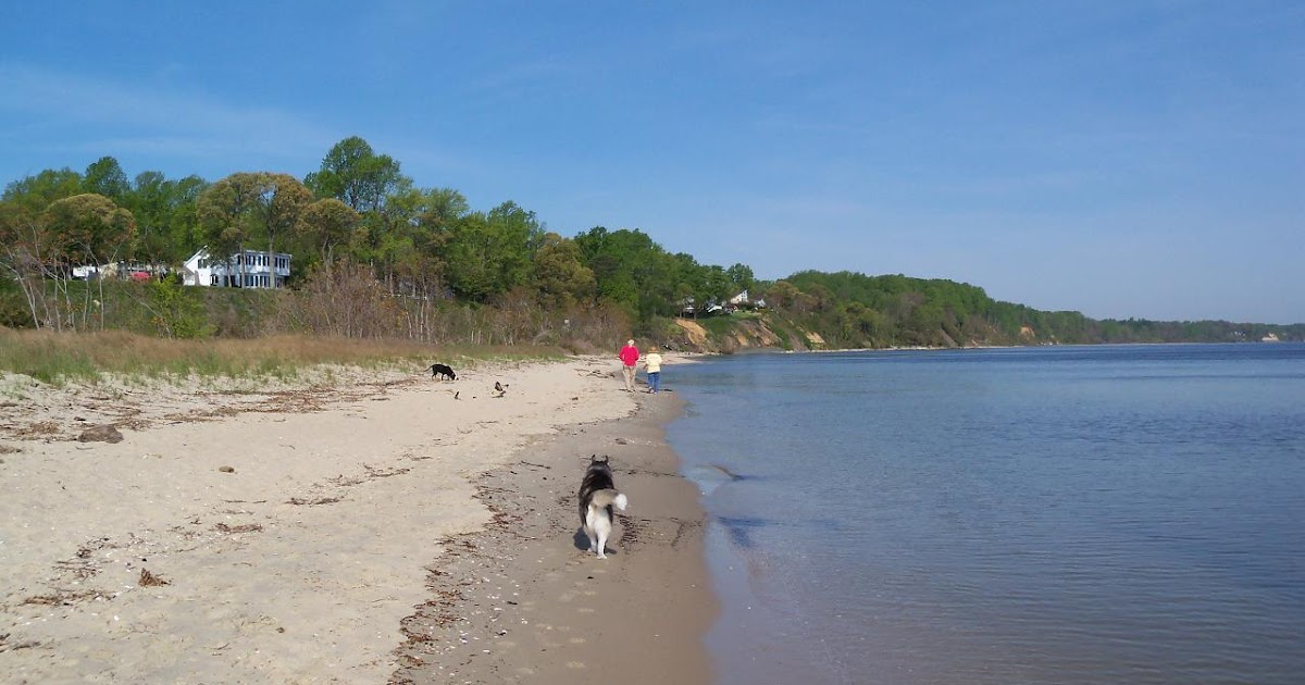 A View from the Beach: Sunday Beach Report - 3/10/13