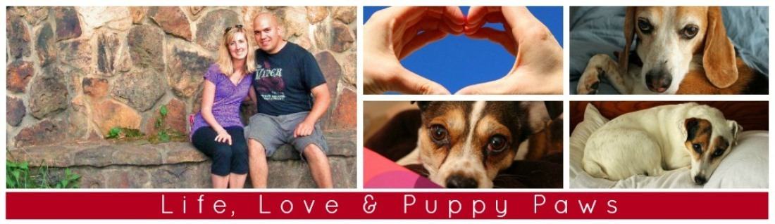 Life, Love & Puppy Paws