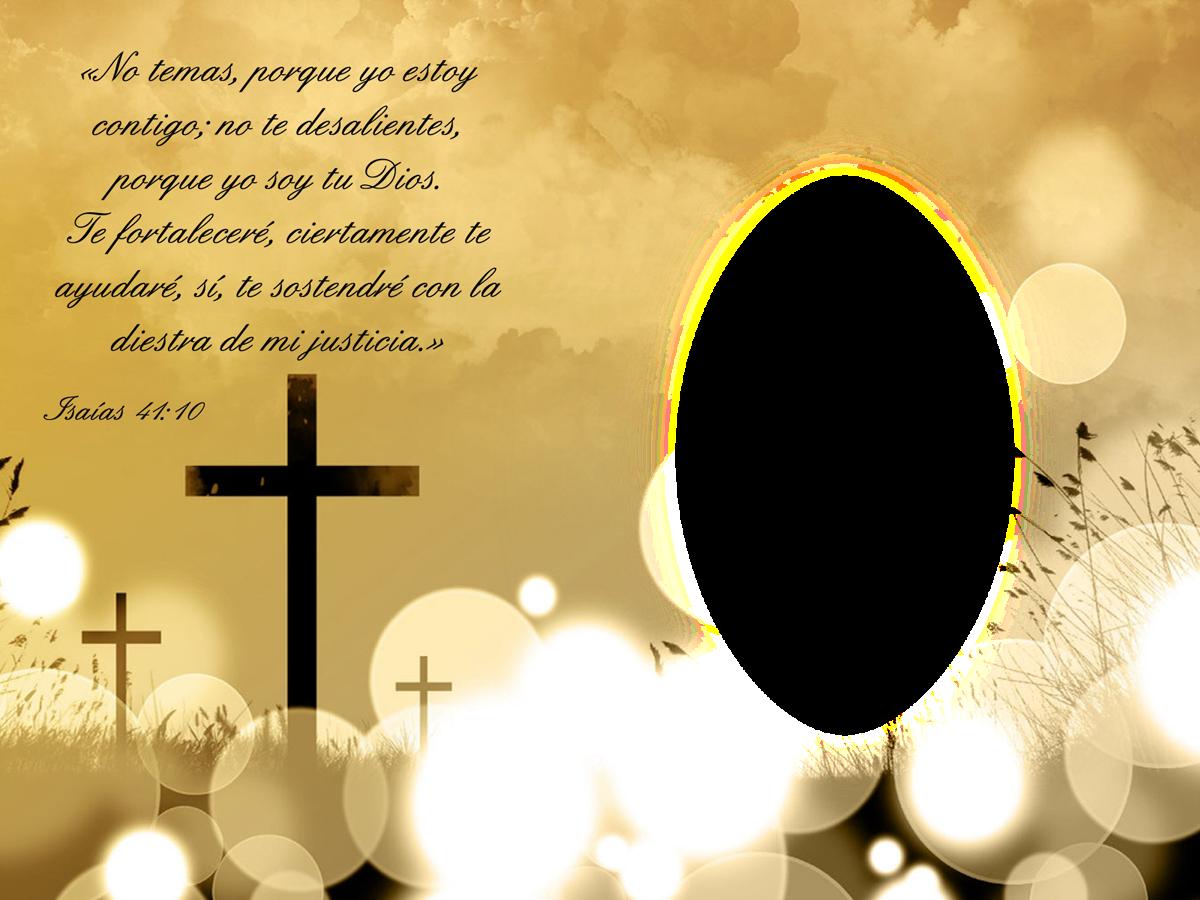 versículo biblico
