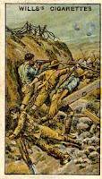 7th Battalion VC Action At Battle Lone Pine