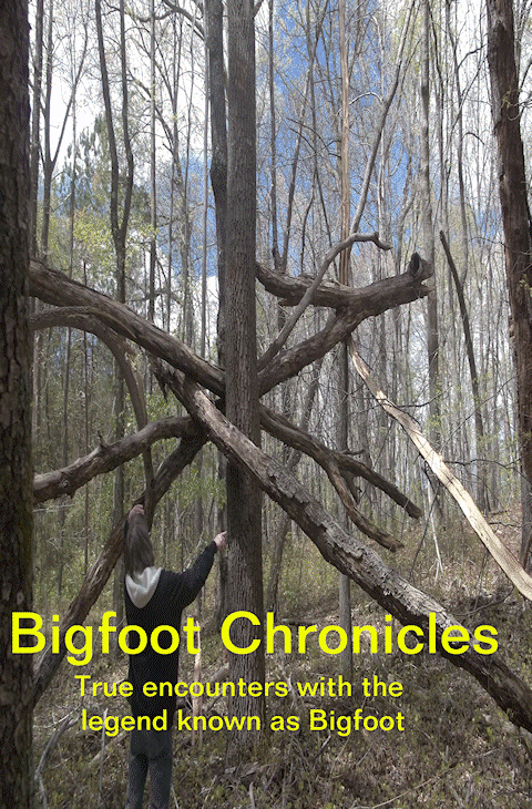 Bigfoot Chronicles Book 1