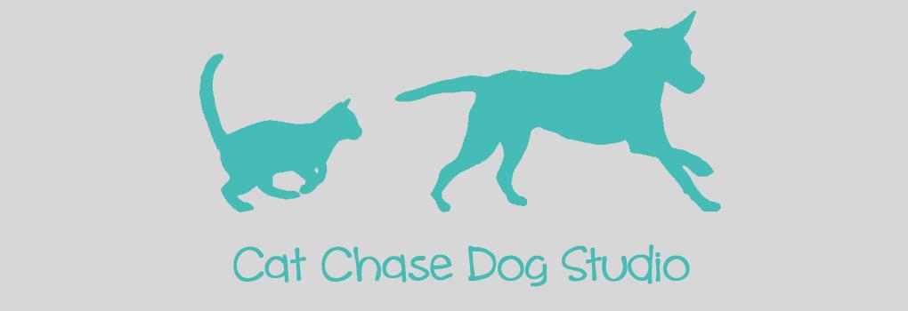 Cat Chase Dog Studio