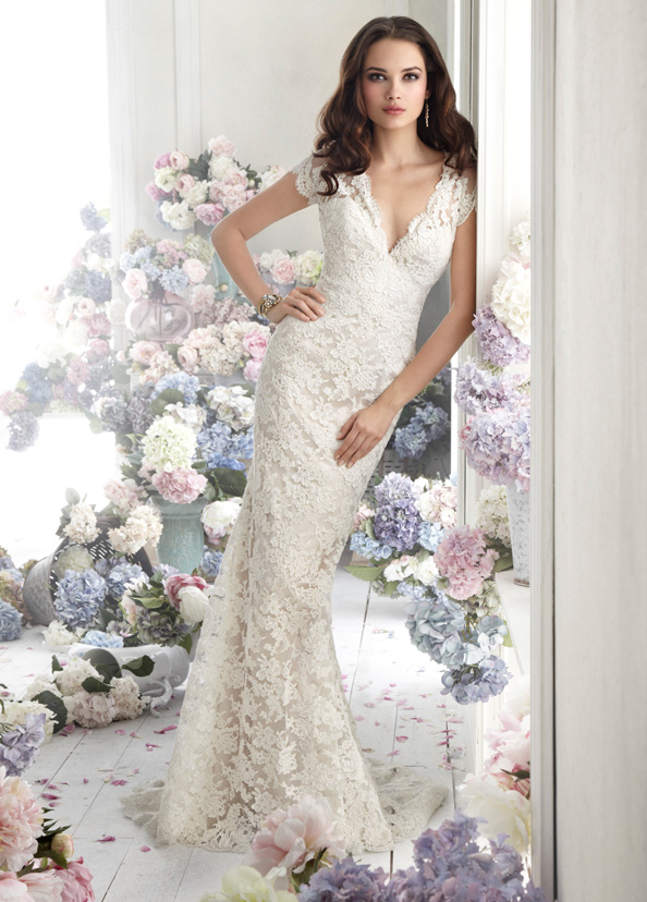 elegant lace wedding dresses in V-neckline