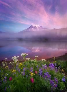 Montañas con flores de primavera en el lago