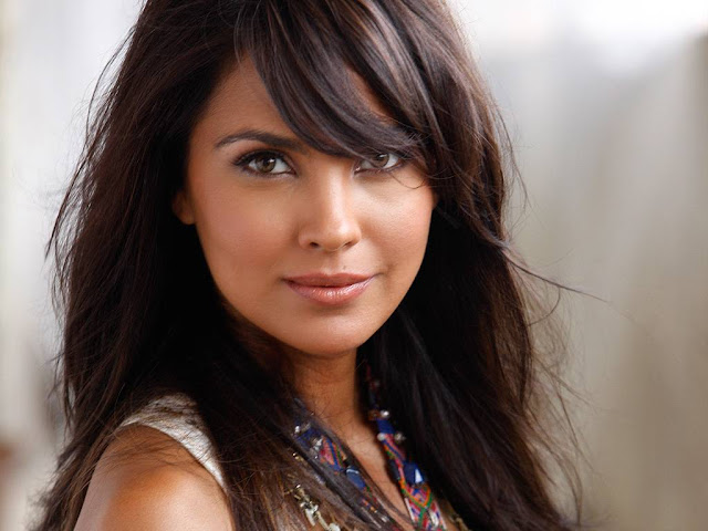 Lara Dutta sexy wallpapers