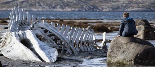 Russian Drama Leviathan New on DVD and Blu-Ray