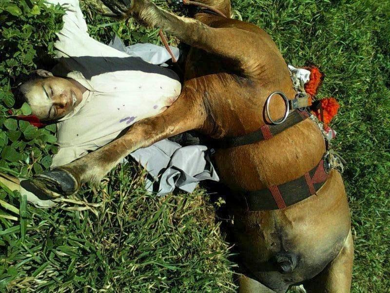 Vaqueiro, seu cavalo e mais seis animais são vítimas fatais de uma descarga elétrica em fazenda no município de Senador La Roque