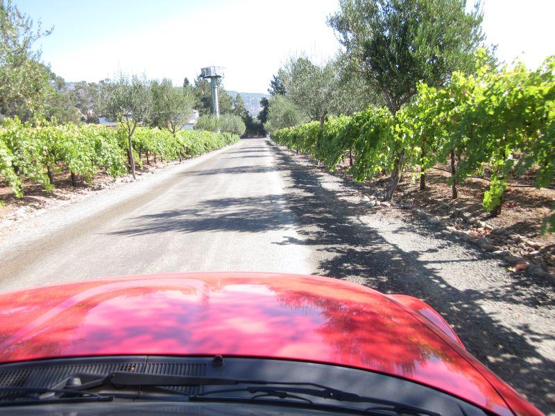 Napa valley wineries tasting coupons