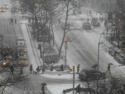 New York City Winter Snow Storm Janus