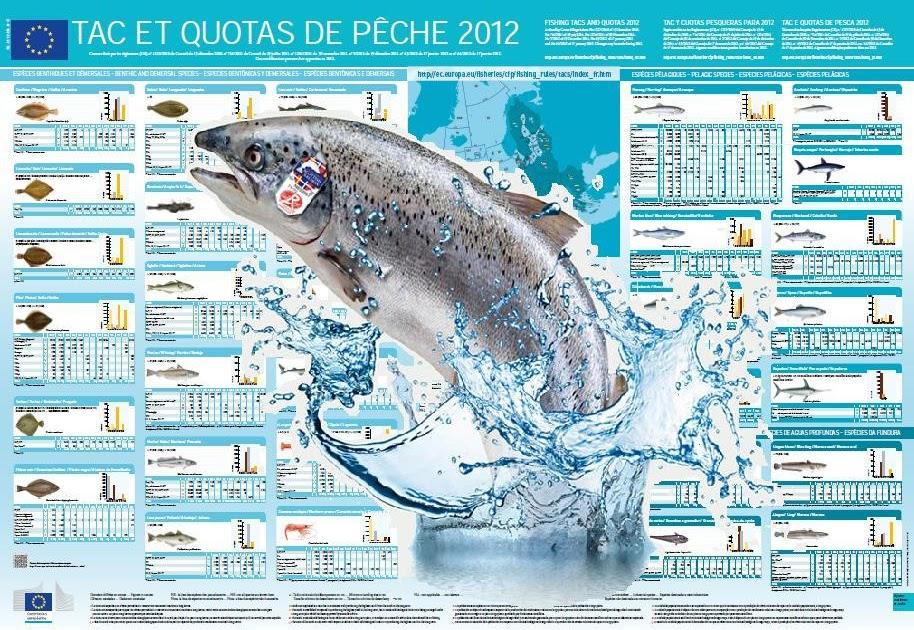 Les films en ligne la bonne qualité de la particularité de la pêche nationale