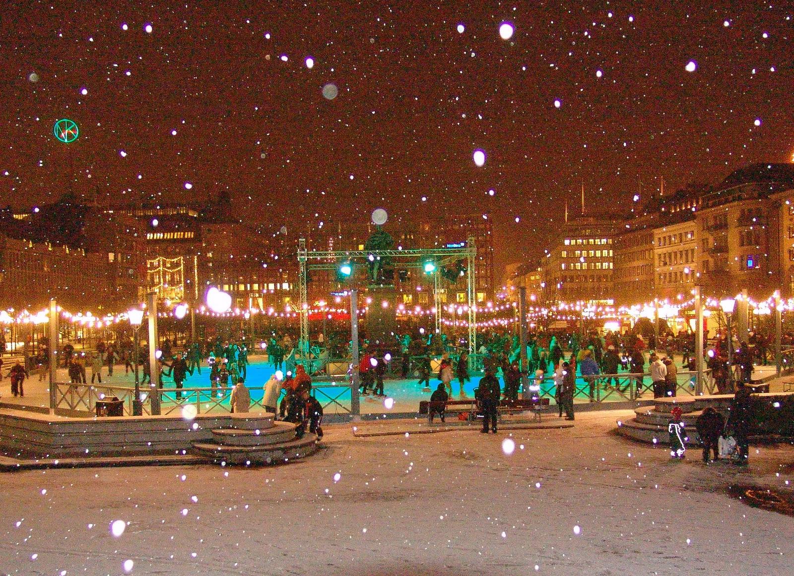 The Stockholm Tourist Winter Activities 2012