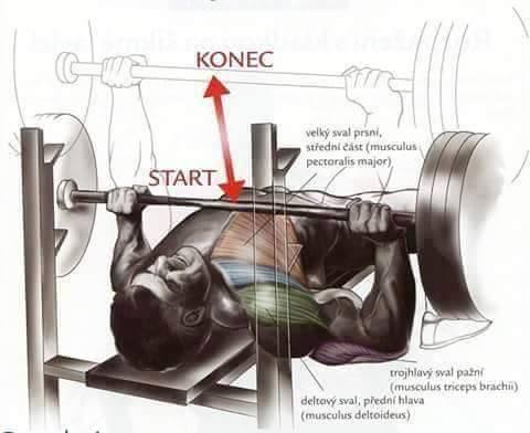 Bodybuilding weight training Exercises 1