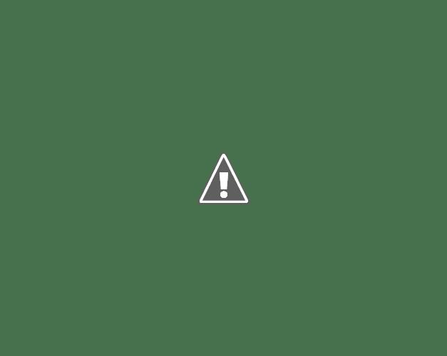 Lecithin Dan Omega