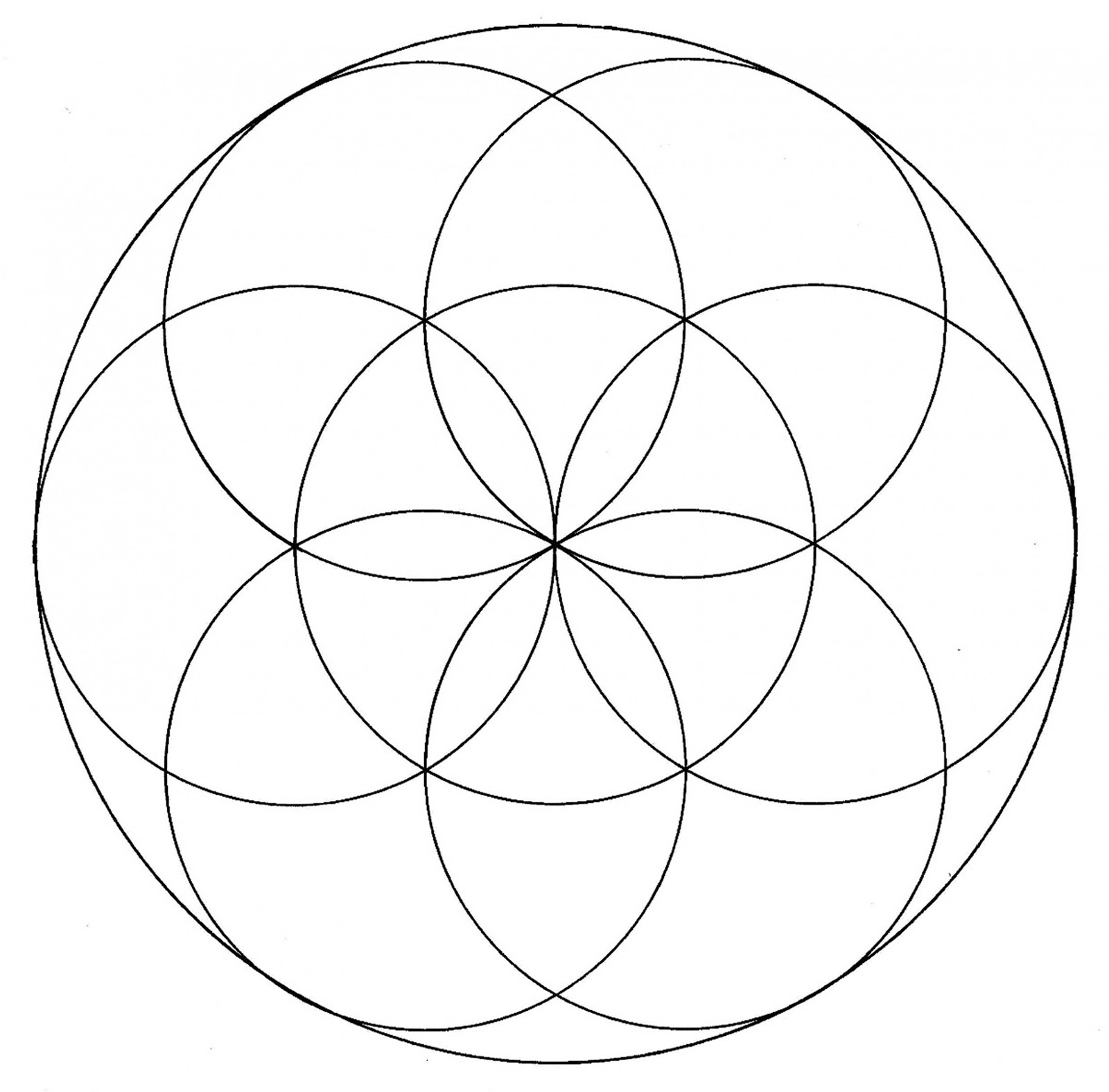 fatfatsheep Flower of Life