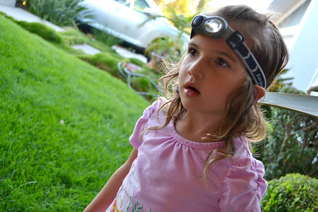Mommy Testers critter hunting with Energizer headlights #LightMyWay