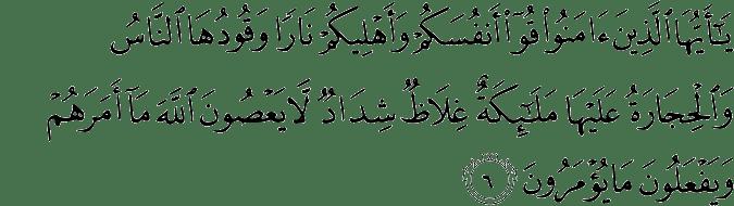 QS. At-Tahrim 66:6