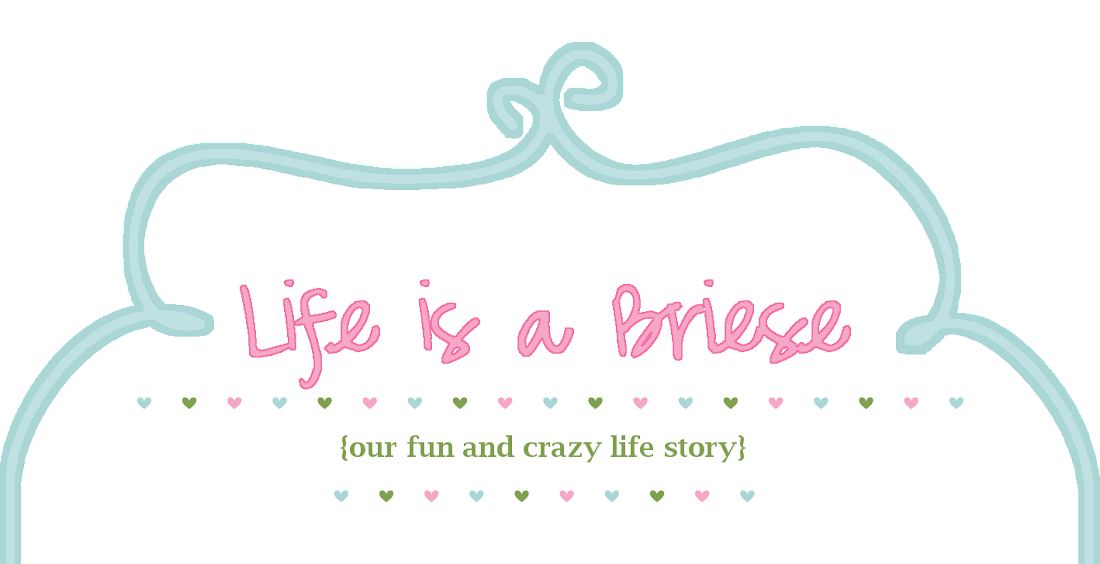 Life is a Briese