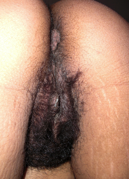 Indian Aunty Hairy Pussy Big Hairy Pussy