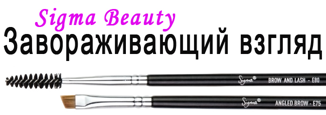 Sigma brush E75 E80