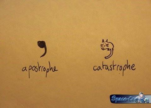 funny cats comics pics