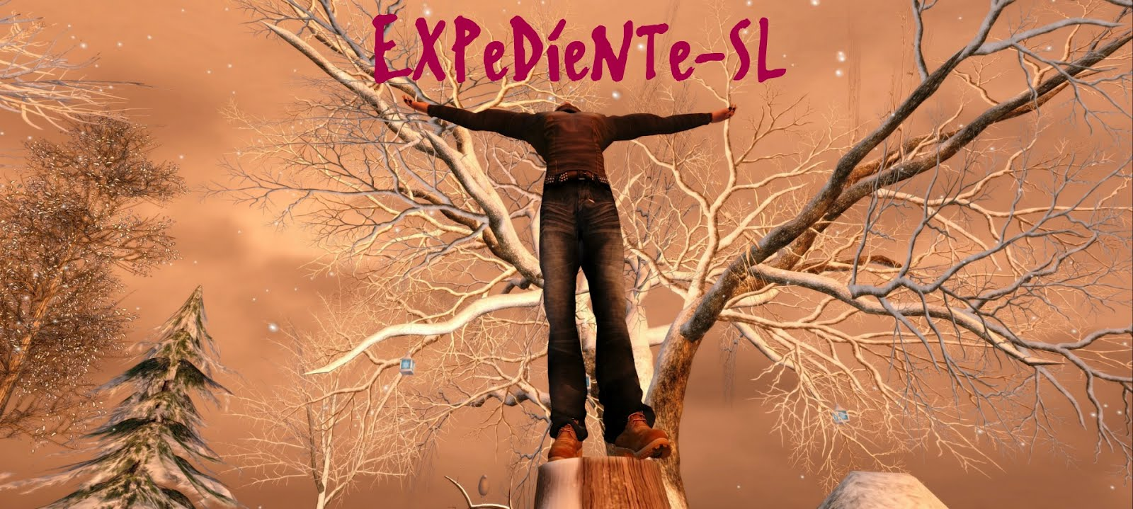 EXPeDieNTe-SL