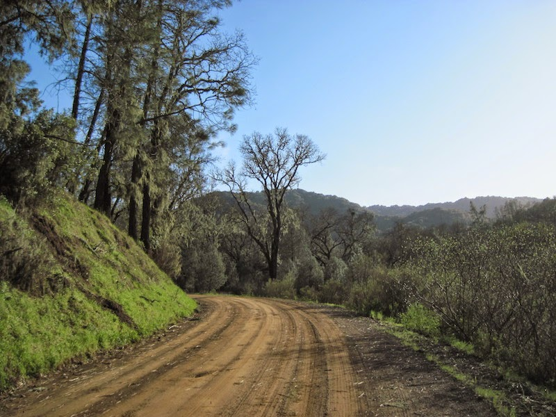 Dover Canyon Road, Templeton, ©B. Radisavljevic