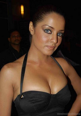 Celina Jaitley Actress Wallpapers