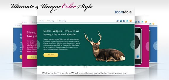 ToomMorel - Premium Wordpress Theme Free Download