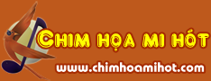 Chimhoamihot