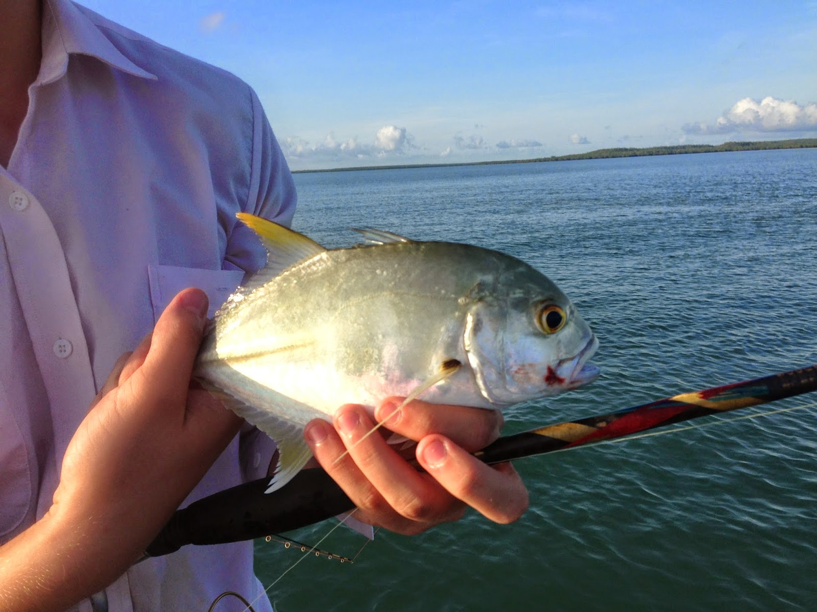Saltwater Fly Fishing SWOFFING Darwin NT Half Day Trip