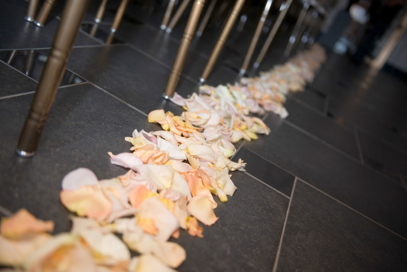 Sixty State Place Wedding - Rose Petal Aisle - Downtown Albany NY Wedding - Old Historical Bank Wedding - Historical Venue Wedding - Upstate NY - Splendid Stems Floral Designs